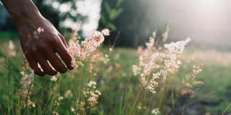 Slow Life, Quick happiness