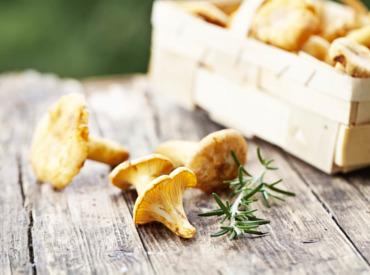 Cogumelos: o alimento que vai querer ter sempre à mão